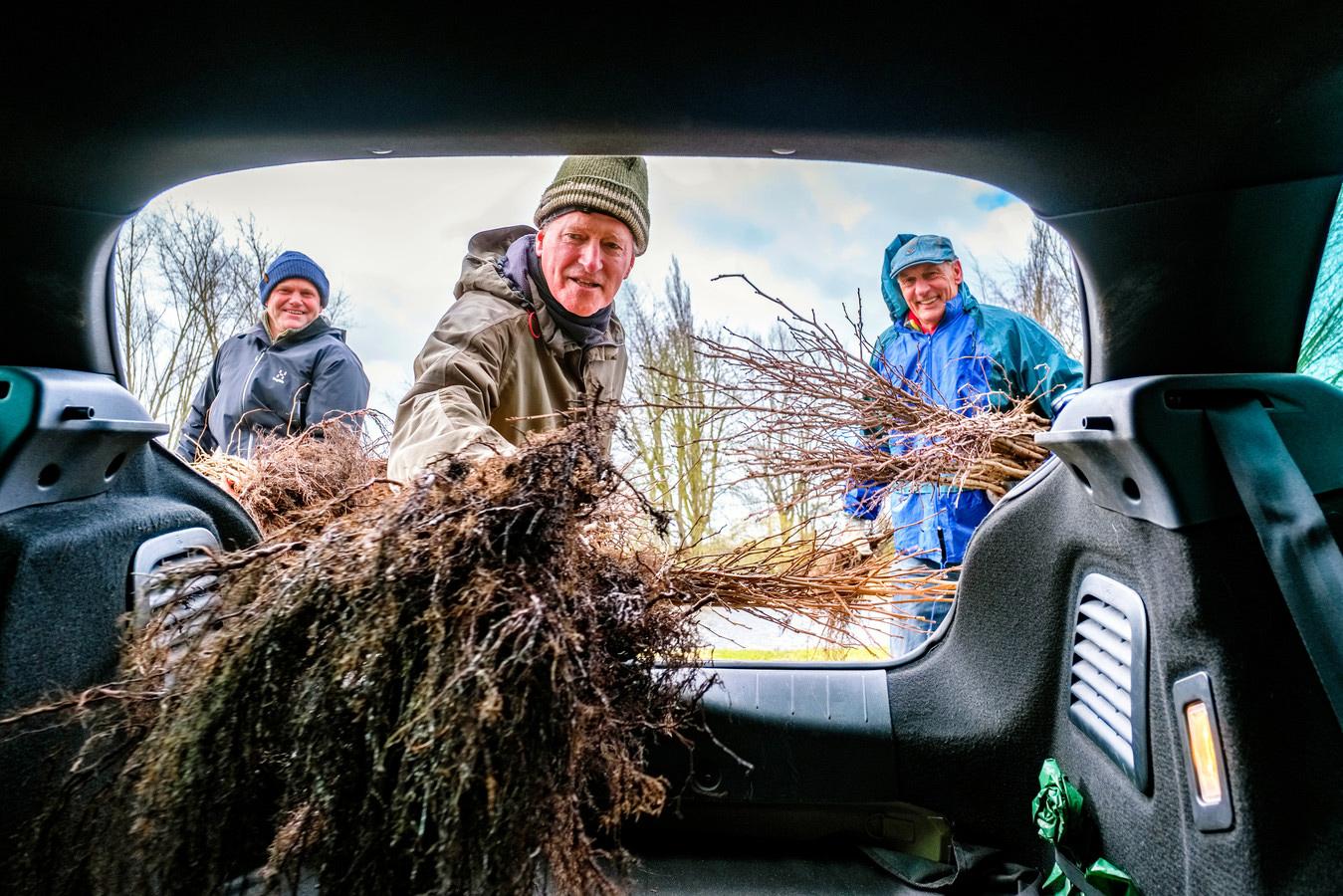 Op de afhaallocatie in Abcoude helpen twee vrijwilligers (Joost Box, groene muts, en Steven Enters blauwe pet, beide uit Nigtevegt) en de eigenaar van de locatie (Hardy Heijmen, blauwe muts) mee om een de bomen coronaproof in de achterbak van de auto te plaatsen. © Marlies Wessels
